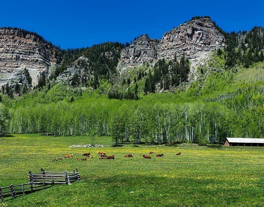 Colorado Basin Roundtable